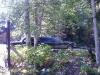 Campground Shuttle